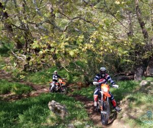 11enduro_tours